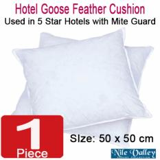 Price Comparisons For Nile Valley S Hotel Collection Goose Feather Square Cushion With Mite Guard
