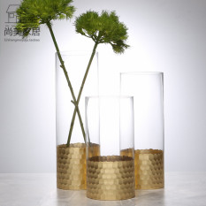 Modern Simplified European Golden Transparent Glass Vase Model Household FGZ Flower Arrangement Straight Small Grow in Water Flower Holder