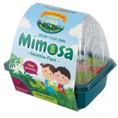 Discounted Paris Garden Kids Greenhouse Mimosa