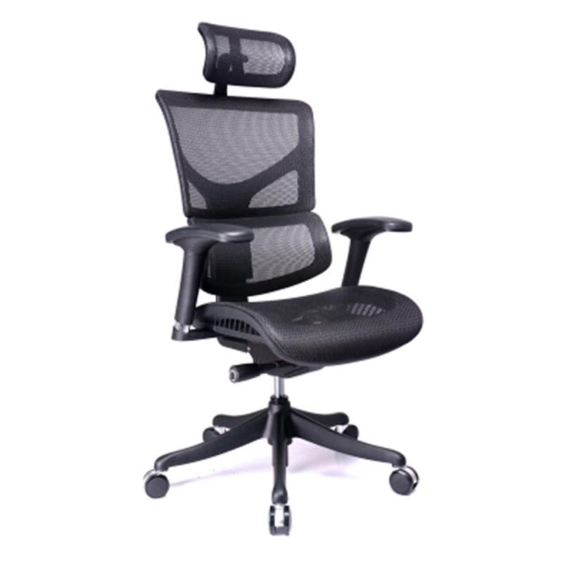 SAIL Serial Ergonomic Office Chair (Black) Singapore
