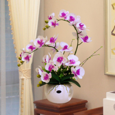 Butterfly orchid decoration