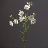 Purchase Ywu Artificial Cosmos