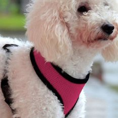 Soft Mesh Dog Harness Pet Puppy Cat Clothing Vest Pink S By Sportschannel.