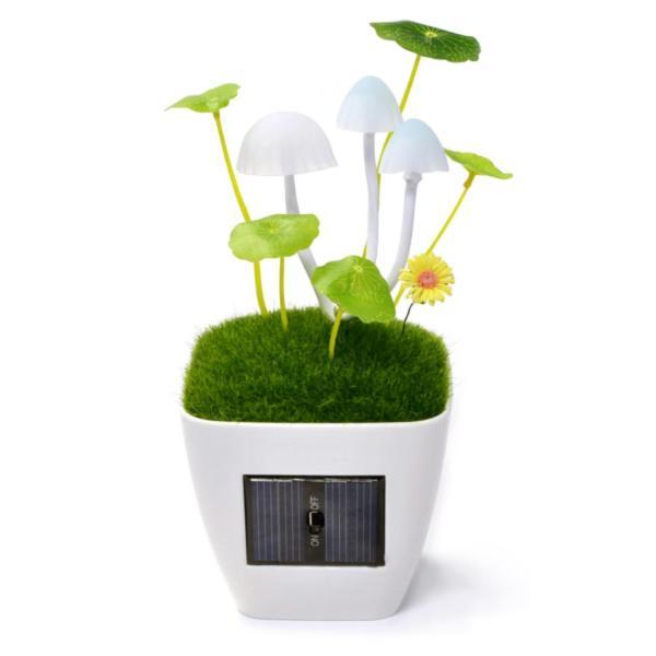 Solar Mushroom LED Lamp