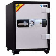 Solid SLS-61E Electronic Fire Safe