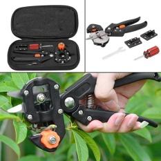 Buy Stainless Steel Professional Tree Pruning Shears Scissor Grafting Cutting Tool Intl Oem Online