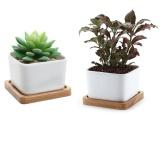 Price Comparison For Succulent Planter Succulent Pots With Bamboo Tray Cactus Pots Containers Pots For Succulents Planting Mini Succulent Pots Square Ceramic Pots 2 Pcs A Lot Intl