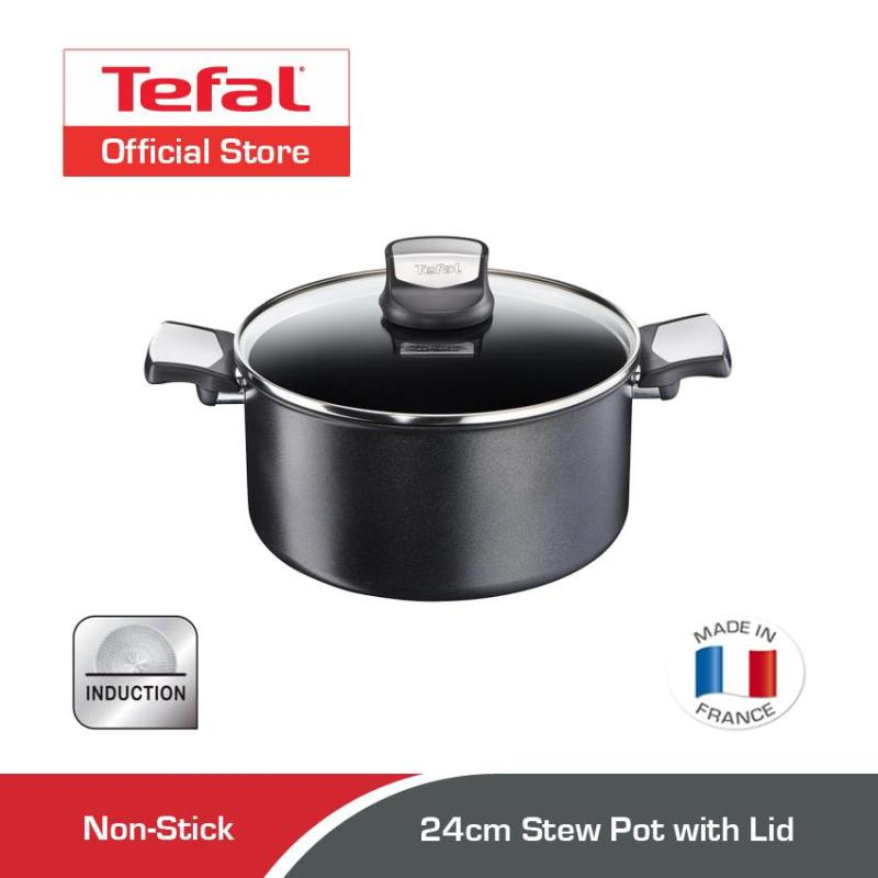 Tefal Expertise Stew Pot w/Lid 24cm C62046 Singapore