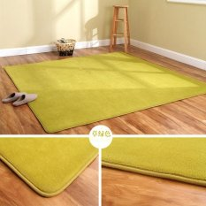 Discount Thick Carpet Washing Coral Lounge Coffee Table Bedroom Bed Mattress Pads Door Mat Made Green 200 200 Intl