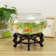 Transparent Glass Round Goldfish Tank For Sale