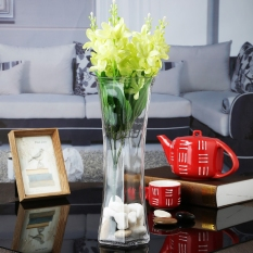 Where To Shop For Transparent Glass Vase Modern Minimalist Lily Lucky Bamboo Large Hydroponic Decorative Vase Living Room Flowers Into A Vase
