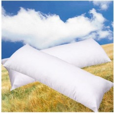Retail Couple Pillow Case Bolster Pillow