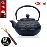 Yun Wentang Paintcoat Old Pattern Small Iron Pot Cast Iron Teapot Reviews