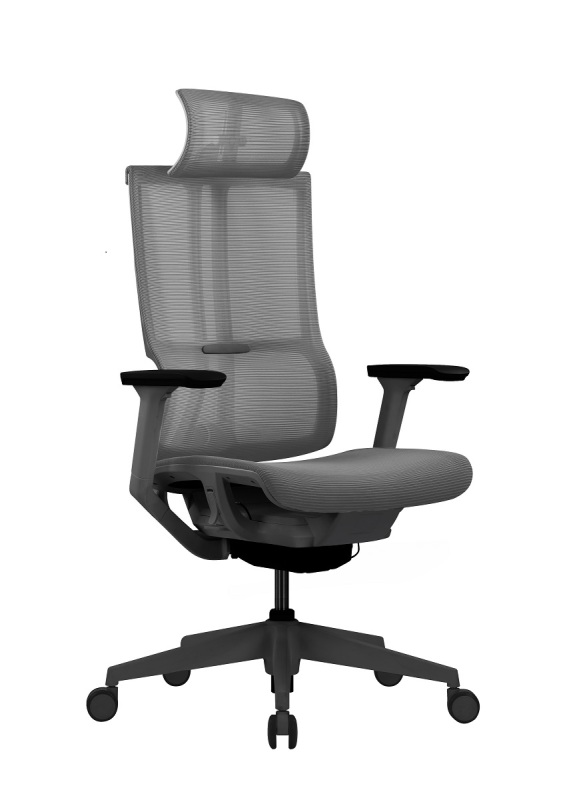 MISS-3 CH303A STRONG SUPPORT ERGONOMIC CHAIR (FREE DELIVERY&FREE INSTALLATION) 5 YEARS WARRANTY Singapore