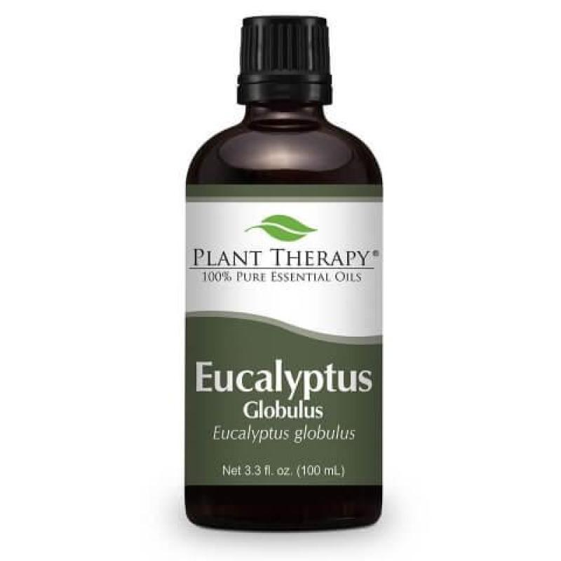 Buy Plant Therapy Eucalyptus Essential Oil - 100ml Singapore