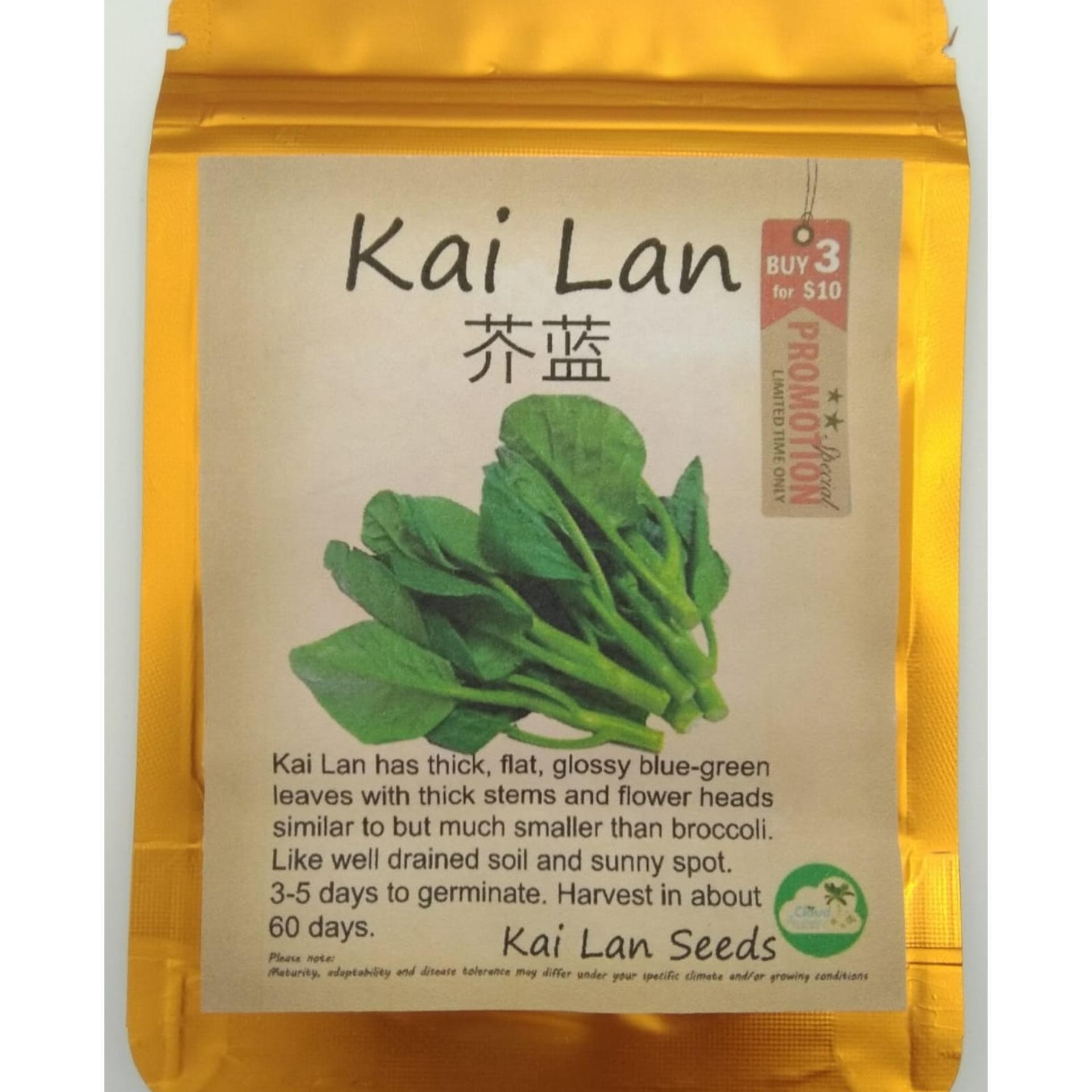 Vegetable Seeds - Kai Lan