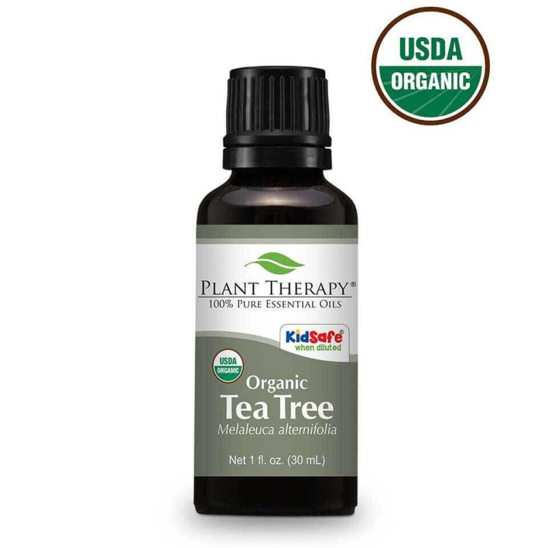 Buy Plant Therapy Tea Tree Essential Oil - 30ml - Ecocert Organic Certified Singapore