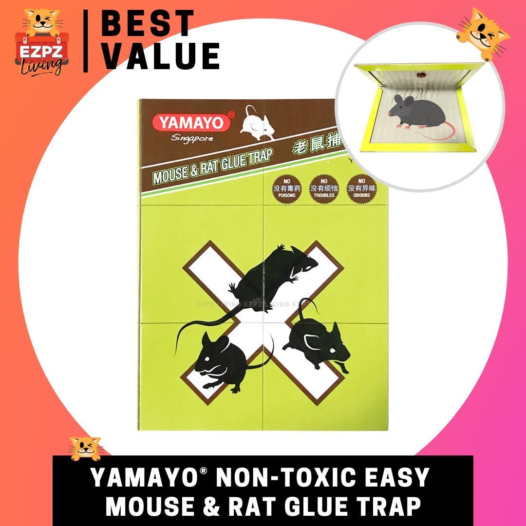 YAMAYO Sticky Rat Mouse Glue Trap - Toxic-free