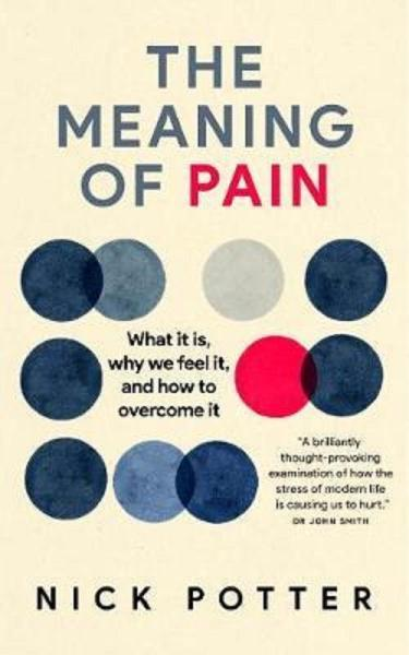 The Meaning of Pain: What it is, why we feel it, and how to overcome it by Nick Potter