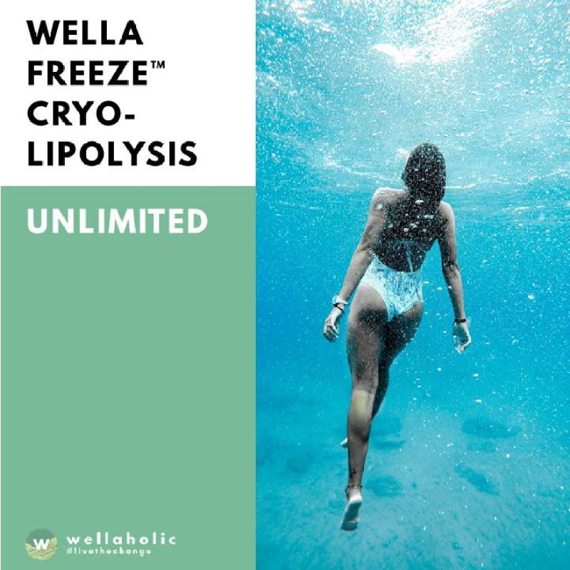 Buy WellaFreeze Fat Freeze Cryolipolysis (12 month Unlimited) Singapore