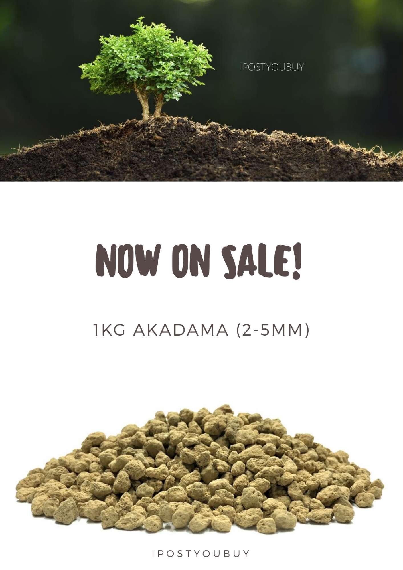 1KG Akadama Soil 2-5mm