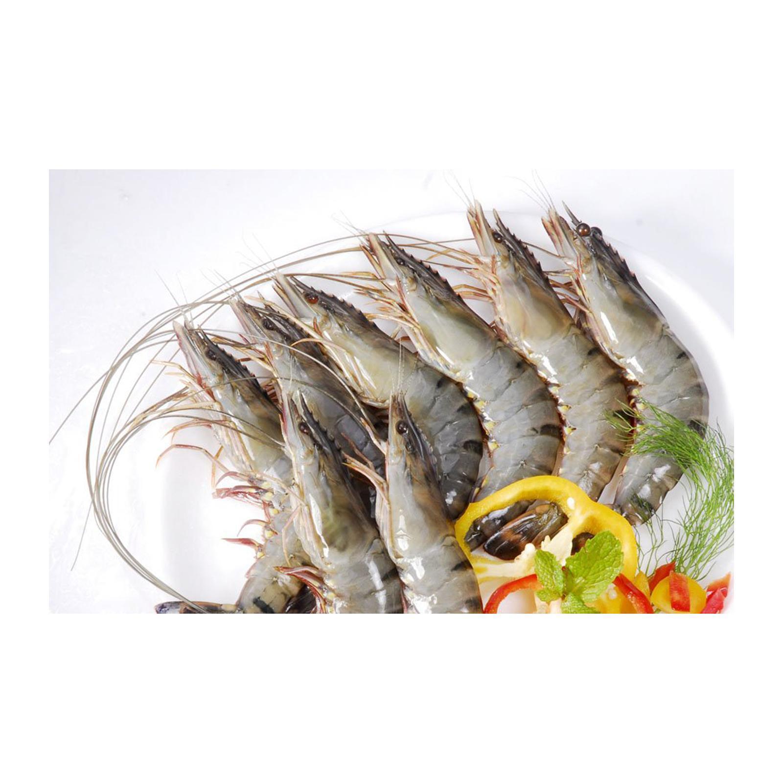 William Koo Seafood XL Tiger Prawn - Shell On - Frozen
