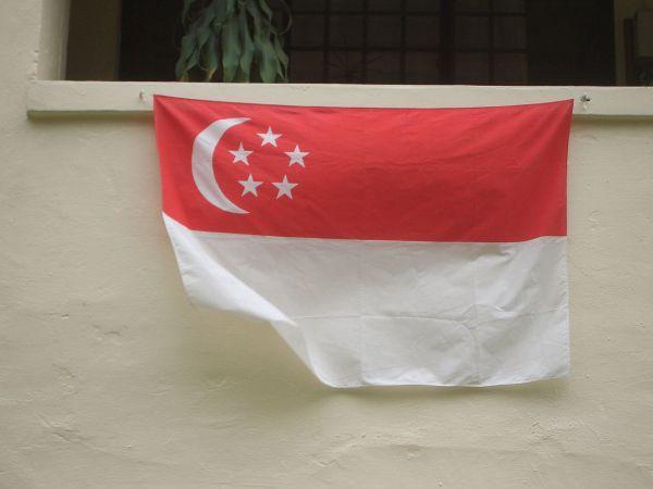 Singapore Flag ( 91cm x 137cm) - Singapore national flag polyester
