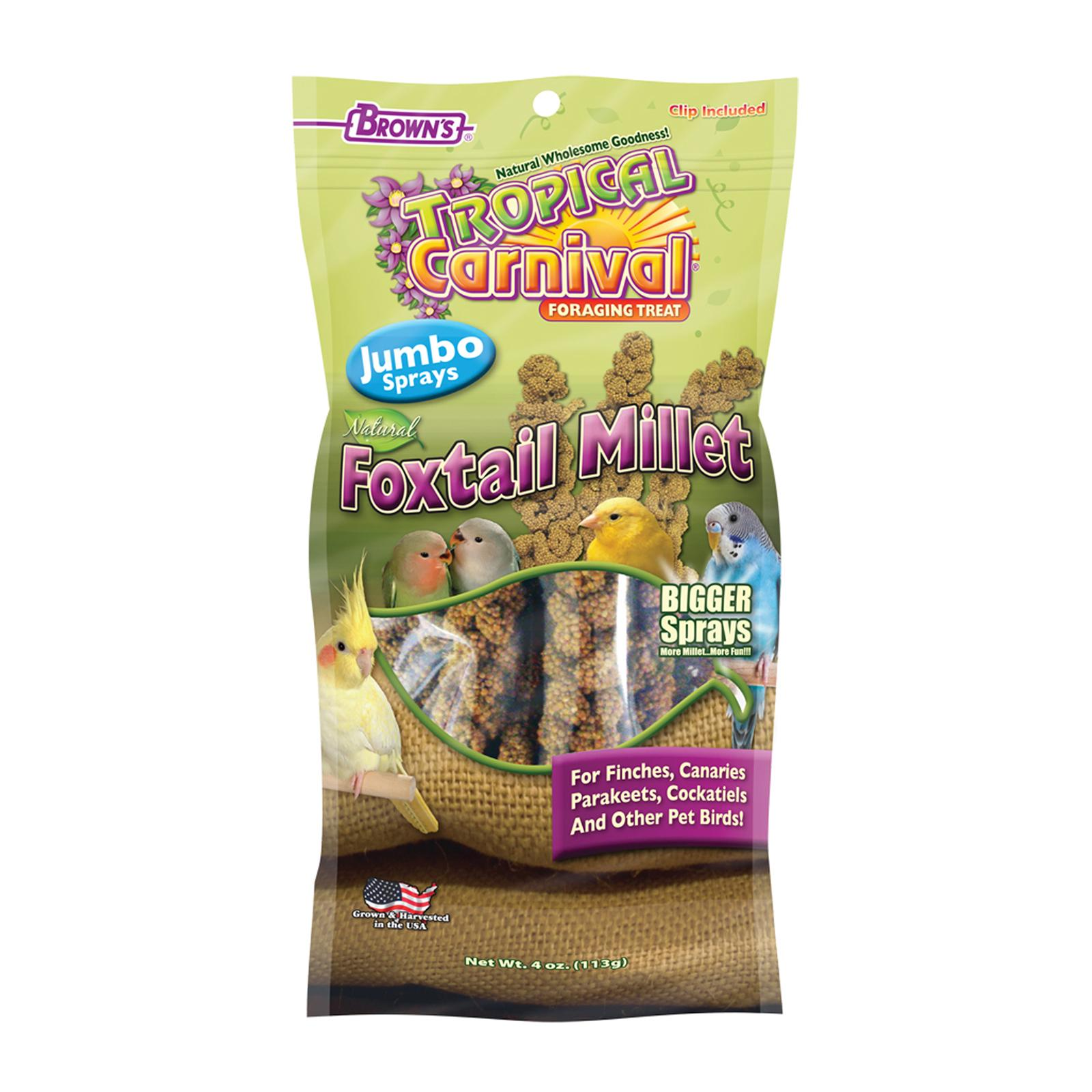 Brown's Tropical Carnival Natural Foxtail Millet Jumbo Sprays 4OZ
