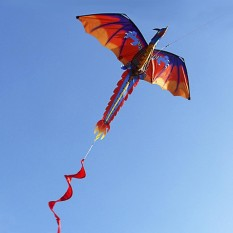Get Cheap 140Cm X 120Cm 55 X 47 Inch Dragon Kite Single Line Flying Kite With Tail 100M Flying Line For Kids Adults Intl