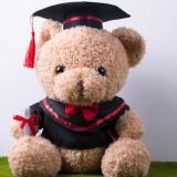 Get The Best Price For 20Cm Graduation Bear Cute Classic