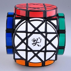 Recent Dayan Wheels Of Wisdom Cube Puzzle Black Intl