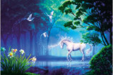 How To Buy Kimo Premium Jigsaw Puzzles 1000 Pieces Unicorn