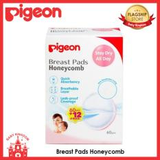 Best Buy Pigeon Breast Pads Honeycomb 60Pcs 12Pcs