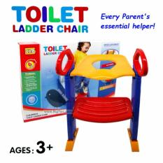 [potty Training] Toilet Ladder Chair / Kids Toilet Training By Big Tori.