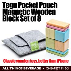 Tegu Magnetic Wooden Blocks Pouch Set Of 8 Free Shipping