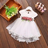 Top Rated Toddler Infant Kids Baby Girls Summer Floral Dress Princess Party Dresses Intl