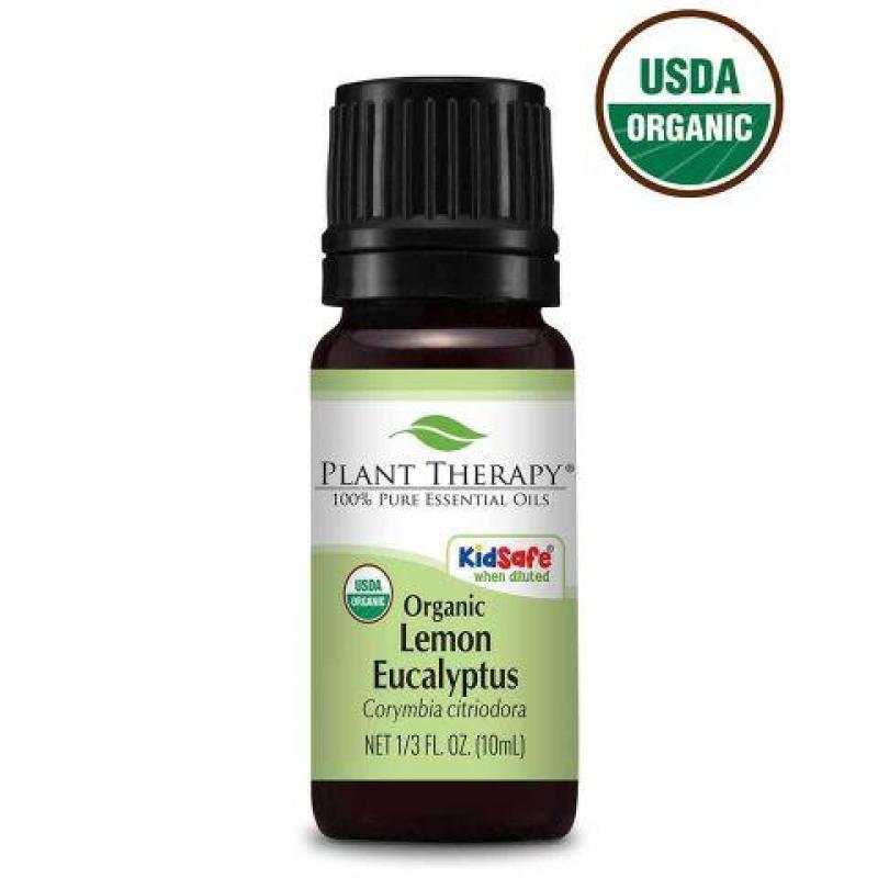 Buy Lemon Eucalyptus Organic Essential Oil - 30ml - Ecocert Organic Certified Singapore