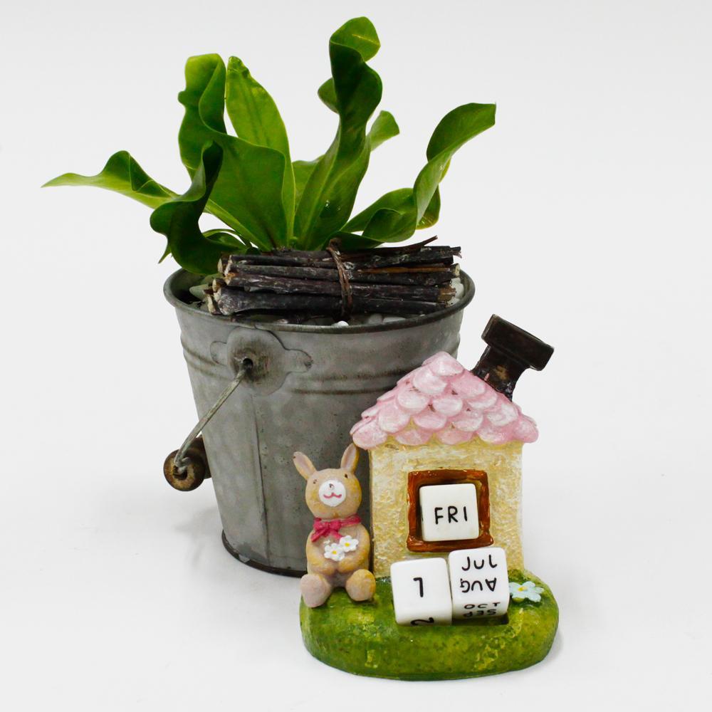 Potted plants and Succulents  - Its A Date PLT009 FarEastFloracom