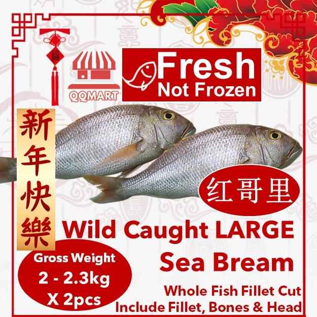 Fresh Wild Caught Whole Large Sea Bream 2 To 2.3kg X 2 Pieces (fillet Cut) By Qqmart.