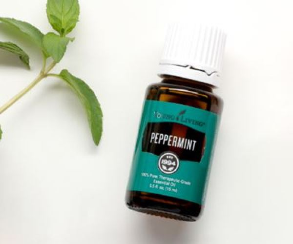 Buy Young Living Peppermint 15ml Singapore