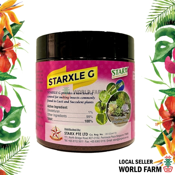 Starxle G Pesticide / Insecticide for Cacti and Succulent Plants, Dinotefuran (Starkle G), 350g