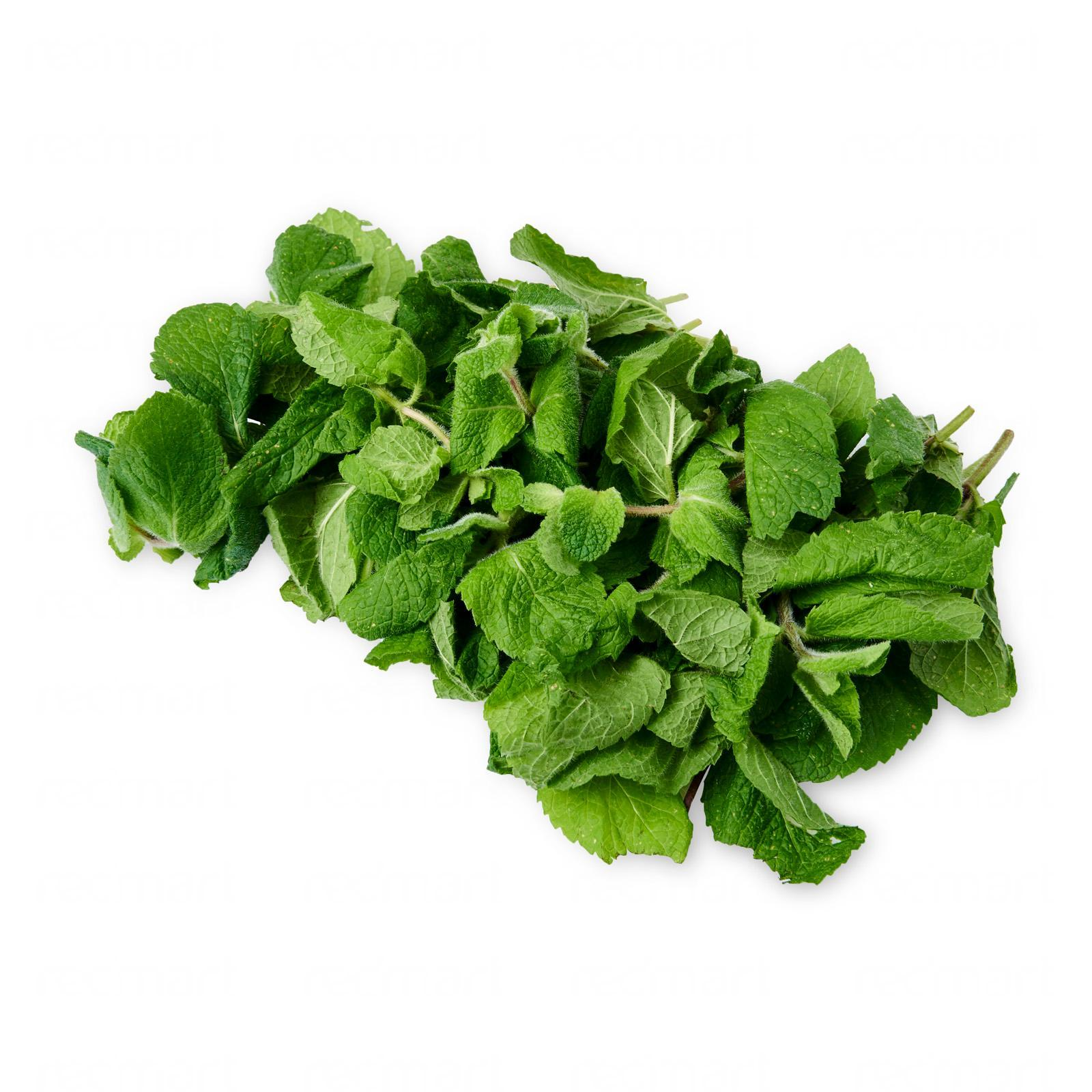 The Little Red Farm Fresh Mint