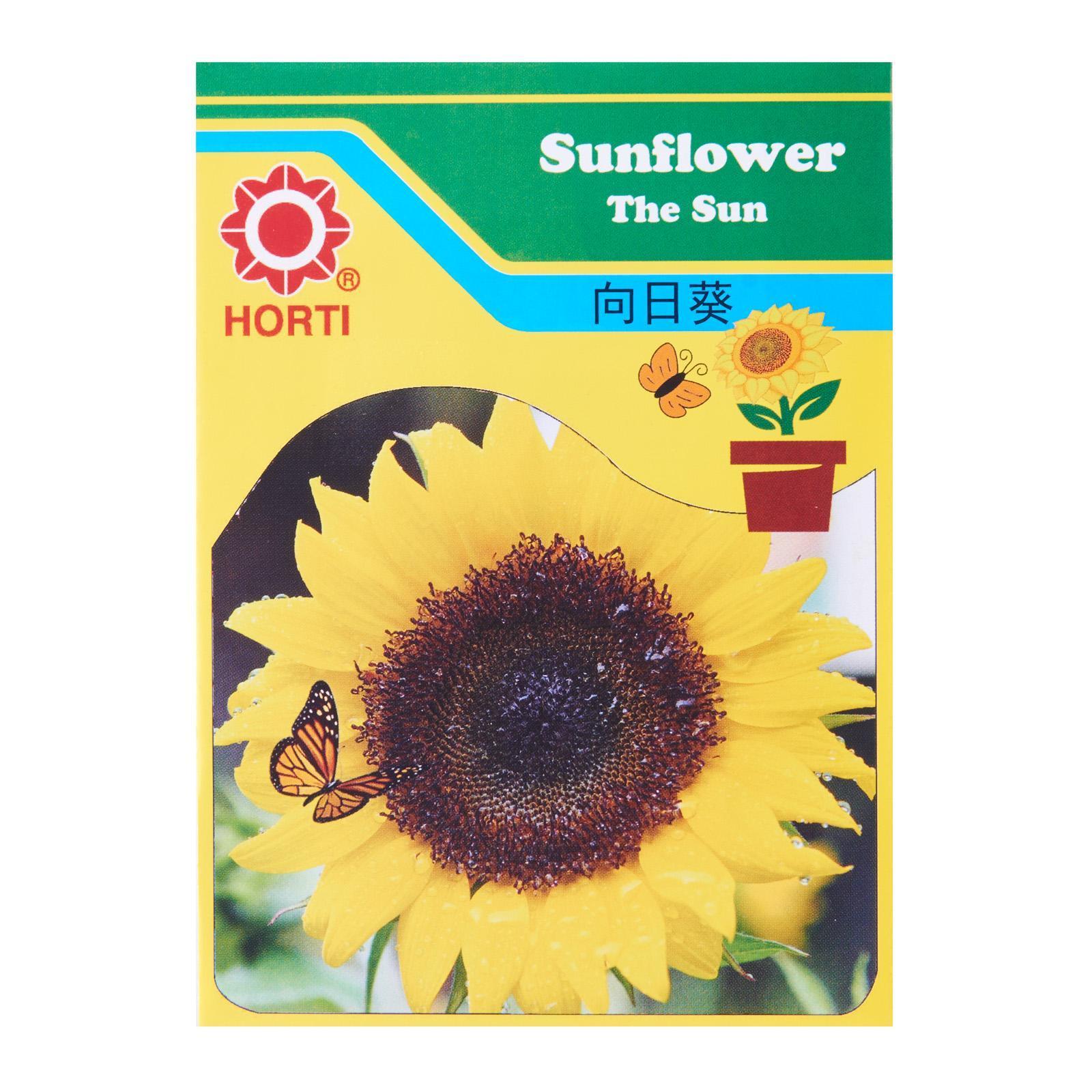 Horti Sunflower The Sun Seeds