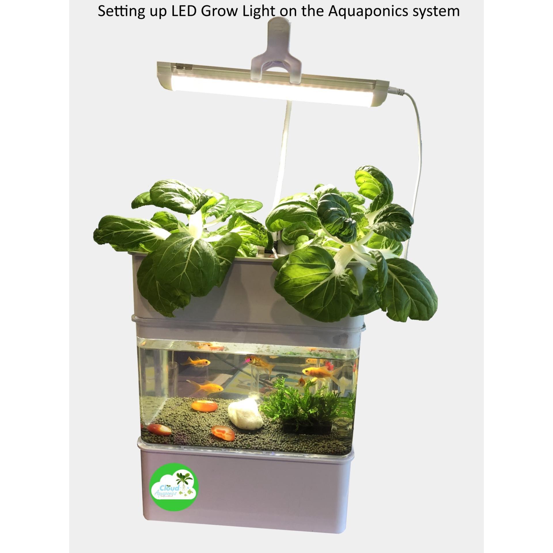 Miniponics- Aquaponics system Home Aquarium Grow your own herb Hydroponics