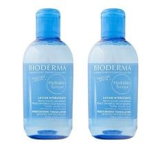 Buy 2 X Bioderma Hydrabio Tonique Moisturising Toning Lotion Sensitve Dehydrated Skin 250Ml Intl China
