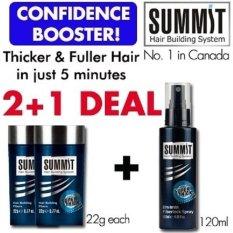 The Cheapest 2 1 Deal Summit Hair Building Fiber X 2 22G Each Summit Fiberlock Spray 120Ml Online