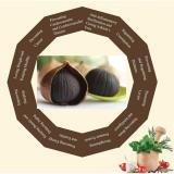 Black Garlic 500G 100 Natural Anti Cancer Lower Blood Pressure Blood Sugar Diet Slimming Strengthen Immune System Shop