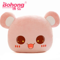 Where Can I Buy Bo Hong Miss Bear Hot Water Bottle Bag