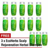 Cheap Buy 10 Free 3 Super Discounted Ecoherbs Scalp Rejuvenation Herbal Shampoo To Reduce Decrease Extreme Heavy Hair Loss Oily Itchy Dry Scalp Dandruff Migraine Headache Ayurvedic Ayurveda Natural Remedies Online