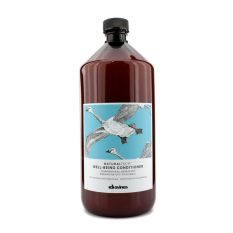 Sale Davines Natural Tech Well Being Conditioner 1000Ml 33 8Oz Davines On South Korea